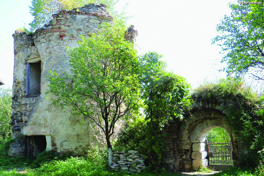 Palatul Cnejilor